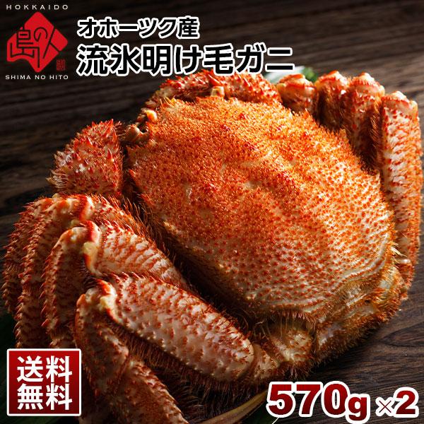 「流氷明け毛蟹」北海道産 茹でたてが届く 570g×2尾セット【送料無料】