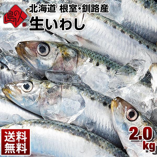 北海道産 生とろいわし(真イワシ) 2kg (25尾前後入り)
