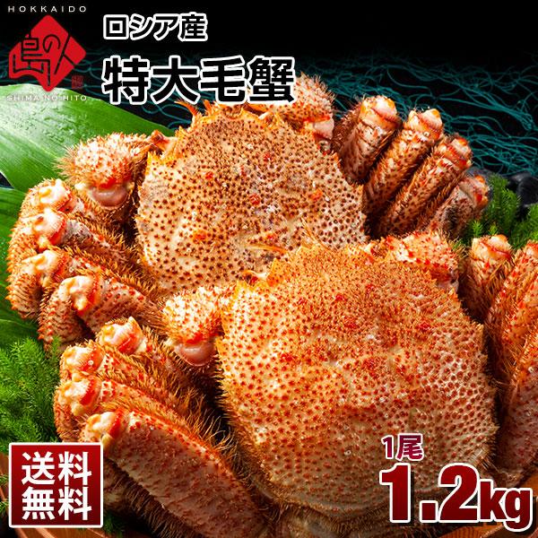 ロシア産 特大毛蟹 (姿) 1尾 1.2kg【送料無料】