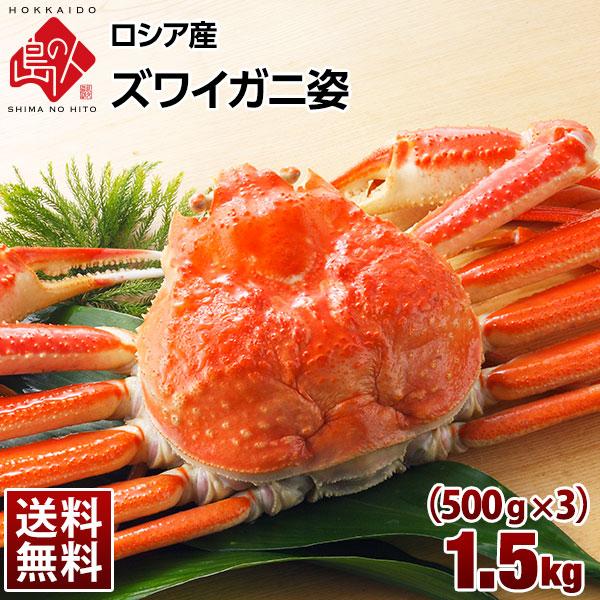 ロシア産 ズワイガニ (姿) 1.5kg (500g×3尾)【送料無料】