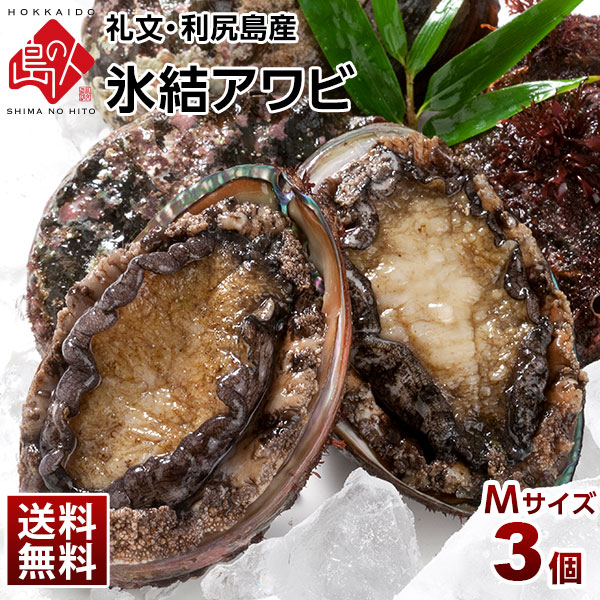 礼文・利尻島産 氷結アワビ Mサイズ×3個 【送料無料】