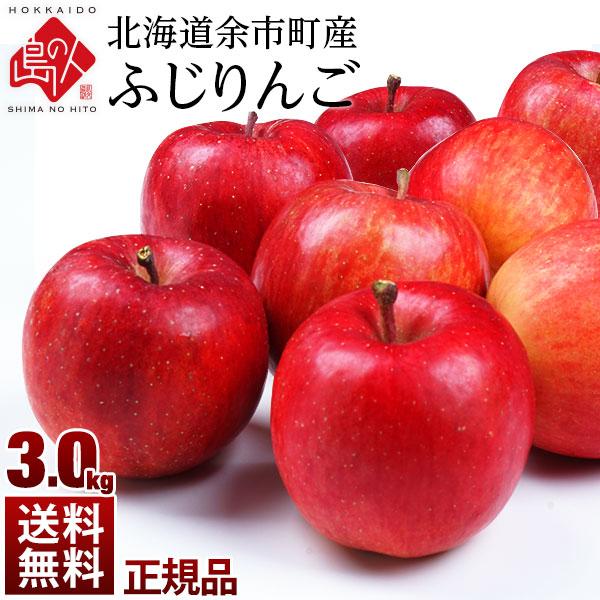 【予約販売】北海道余市産 りんご リンゴ3kg(正規品・品種:ふじ)【送料無料】 取れたてをお届け