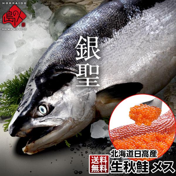 生秋鮭「銀聖」(北海道日高産) メス 大3.5~3.8kg 送料無料 旬の秋鮭を丸ごと一本お届け!