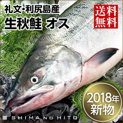 生秋鮭(礼文・利尻島産)オス 大3.0~3.5kg 送料無料