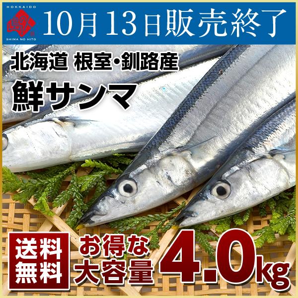 生サンマ 4.0kg 大容量【送料無料】(33~35尾)