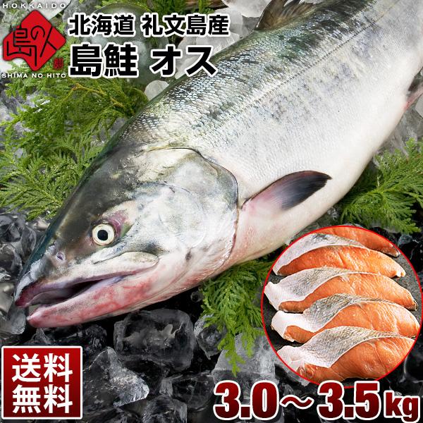 北海道 礼文島産 島鮭 オス 3.0〜3.5kg 秋鮭(姿) 送料無料
